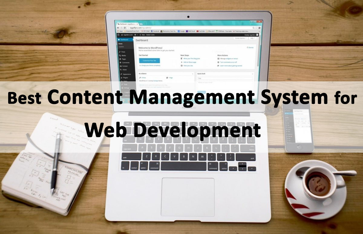 Best CMS for Web Development