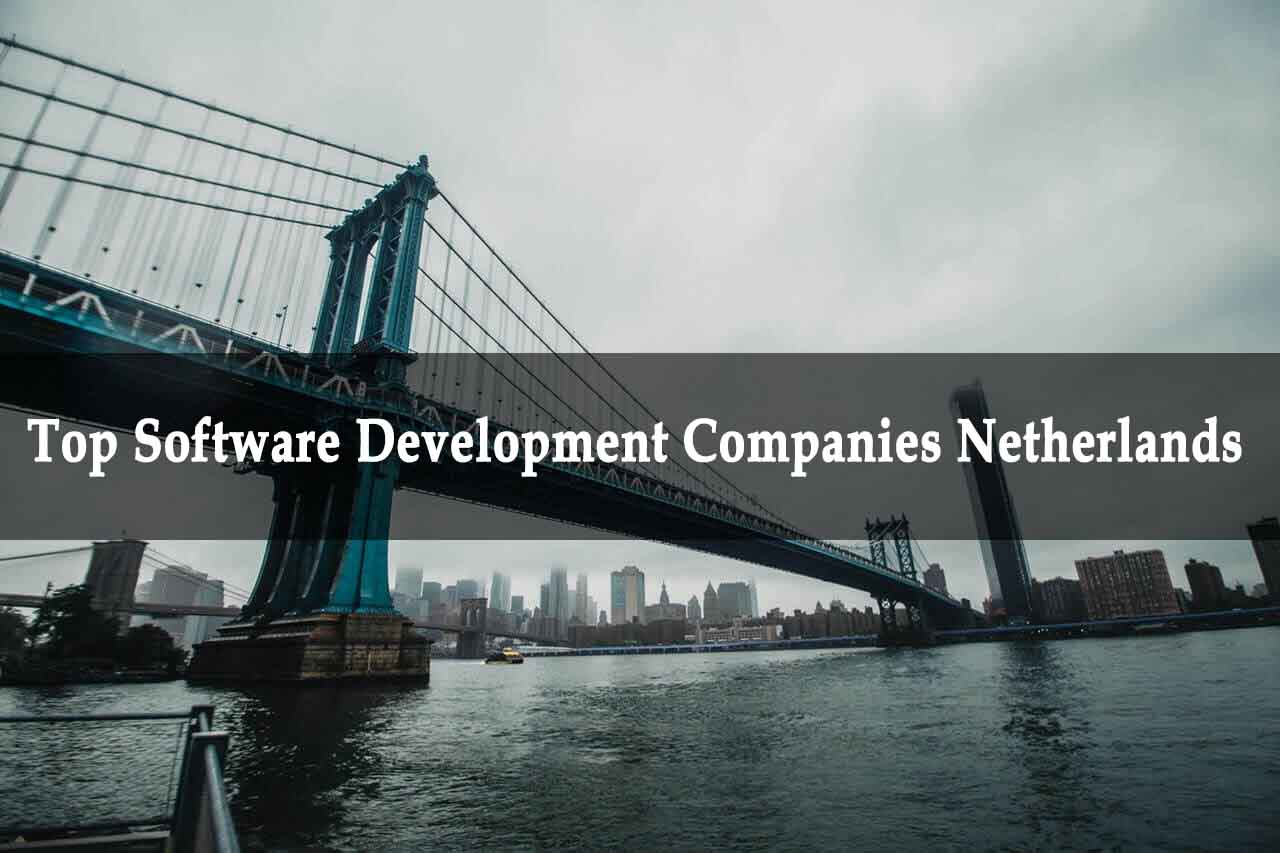 Software Development Companies Netherlands