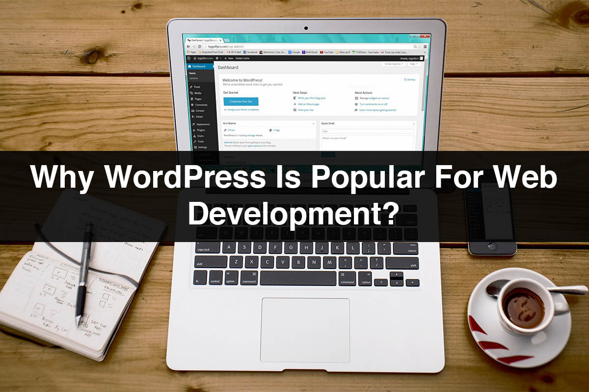 WordPress Web Development   Why WordPress Is Popular for Web Development