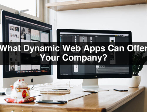 What Dynamic Web Apps Can Offer Your Company?